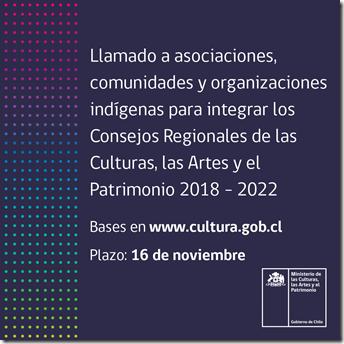 viral_convocatoria_consejo-nacional-organizaciones-indigenas-regiones (3)
