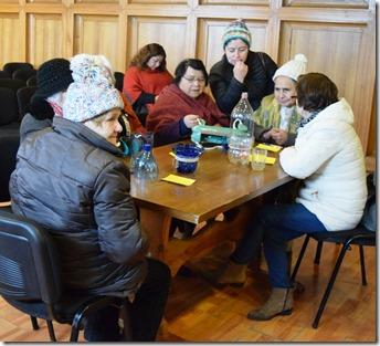 Adultos Mayores de Villarrica se capacitan en cuidado del Medioambiente (2)