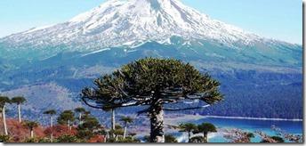Araucania Turismo